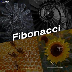 fibonacci Retracement Goo Invest Trade